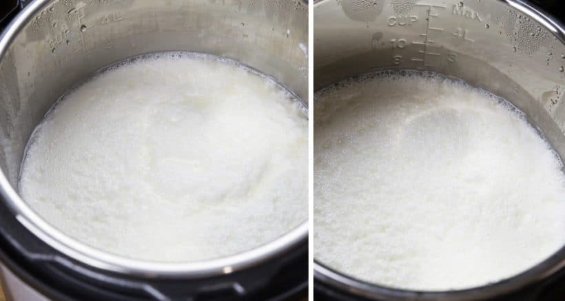 Instant Pot Yogurt Amount to Add