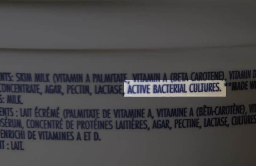 Instant Pot Yogurt Recipe: yogurt starter must have Active Bacterial Cultures