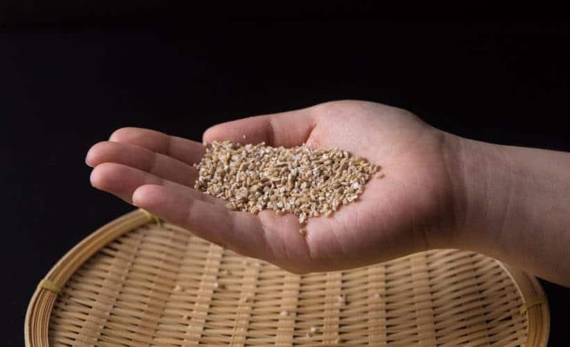 what is steel cut oats - how to cook steel cut oats