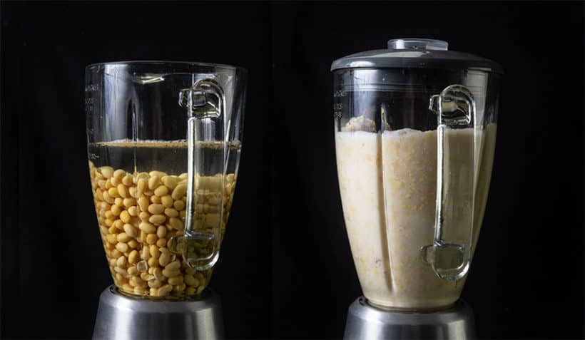 Make 3-Ingredient Fresh Instant Pot Soy Milk Recipe (Pressure Cooker Soy Milk 豆漿, 豆奶): blend soaked soybeans in vitamix blender with cold water until smooth