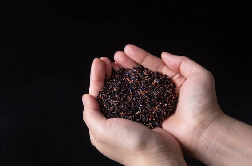 What is wild rice: wild rice is an edible nutrient-dense, protein-rich, high dietary fiber grain harvested from a type of aquatic grass.