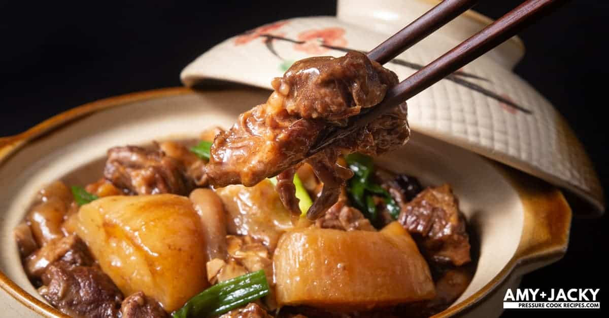 Instant Pot Chinese Beef Stew Tested By Amy Jacky